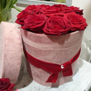 Flowerbox_pittafiori